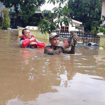 Kucing Yang Terjebak Banjir, Diselamatkan Relawan PKS